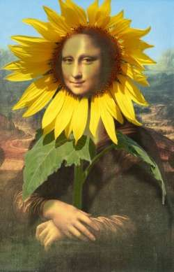 Sunflower Mona Lisa